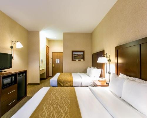 Comfort Inn Warrensburg Station Photo