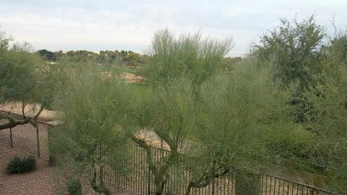 Scottsdale Golf Apartment Photo