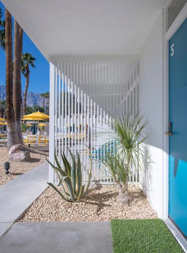 The Monkey Tree Hotel - Palm Springs, CA 92262