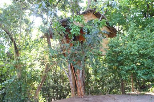 Tree House-Midigama, Midigama East