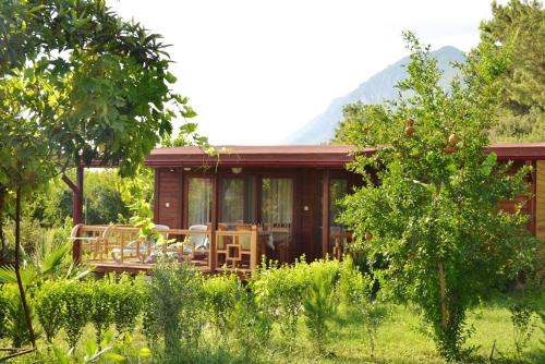 Cıralı Holiday Home Cirali Mahalesi coupon
