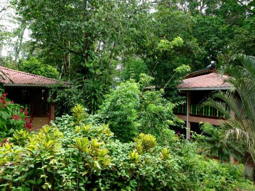 The Goddess Garden Eco-Resort Photo