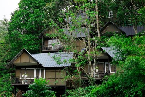 Quirky Resorts In Munnar That Are Hidden Gems We All Want To Find