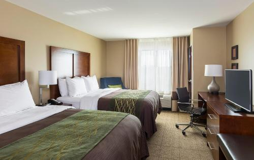 Comfort Inn & Suites- Rochester Photo