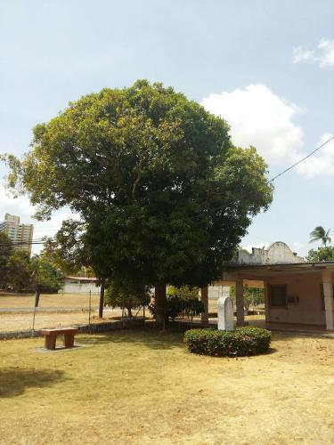The Mango Tree Hostel Photo