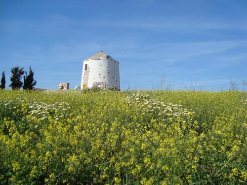 Traditional Windmill - Lefkes Greece