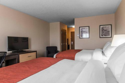 Quality Inn & Suites Kingston Photo