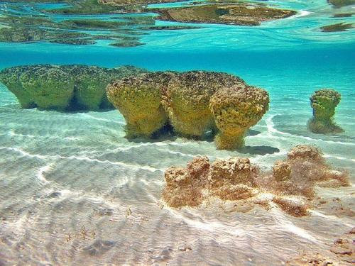 Las Velas Bacalar Photo