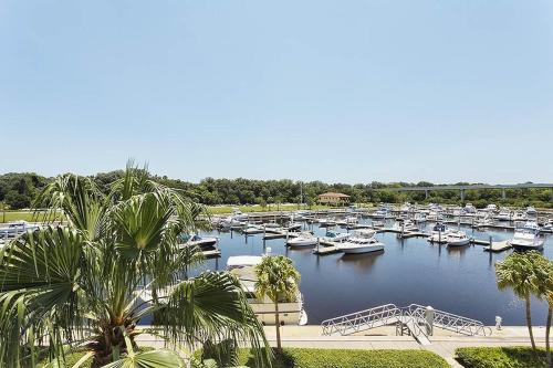 Yacht Harbor 367 Photo