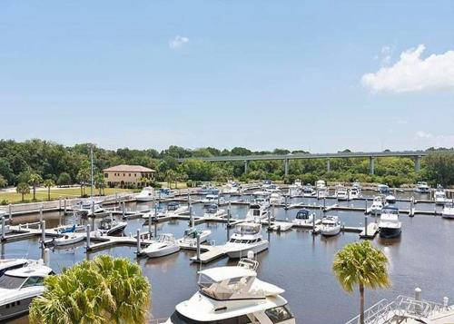 Yacht Harbor 470 Photo