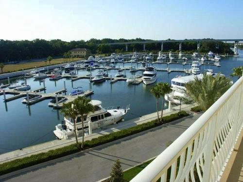 Yacht Harbor 566 Photo