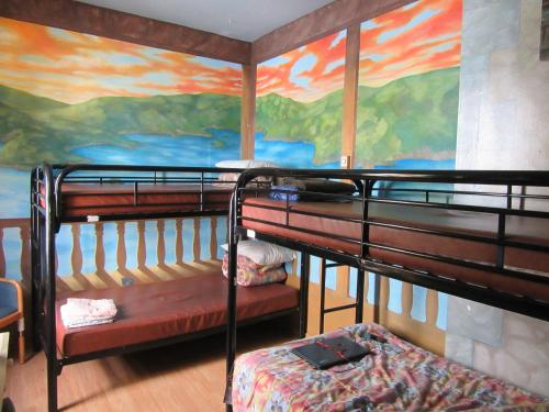 Turtle Hostel Photo
