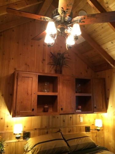 Knotty Pine Cabin Photo