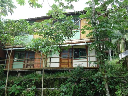 Bamboo House Manuel Antonio Photo