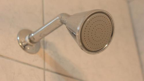 Temporarios Bahia Photo