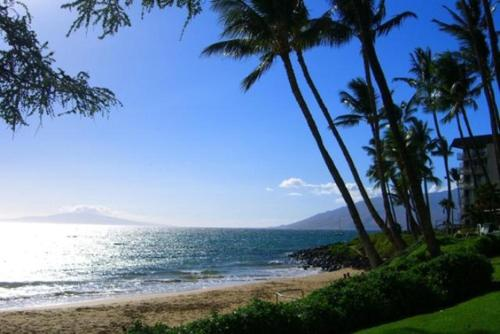 Kihei Akahi #C-217 Photo