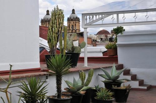 Casa Oaxaca Photo