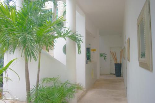 Nasim Condo Hotel Playa Del Carmen Photo