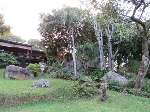 Bushbaby Suite Photo