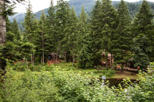 Mount Hood Village Premium Cottage 22 Photo