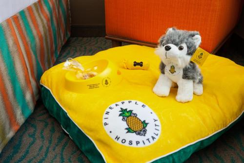 Staypineapple At University Inn - Seattle, WA 98105