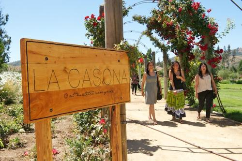 La Casona At Matetic Vineyards Photo