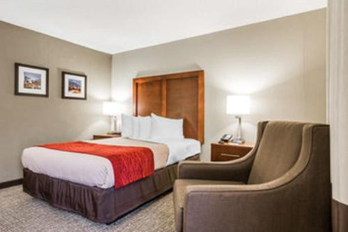 Comfort Inn Sandy Springs Photo