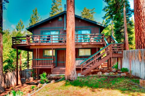 Speckled Tree House Photo
