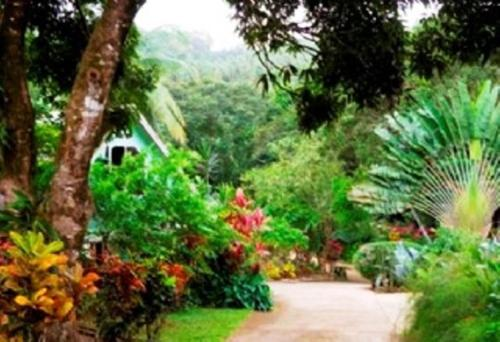 Coffeeriver Cottages, Marigot