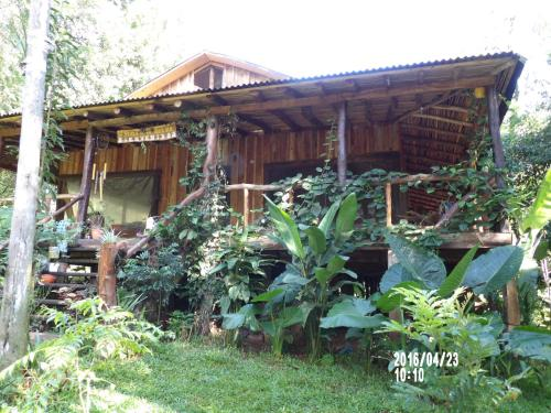 La Perla de la Selva Lodge Photo