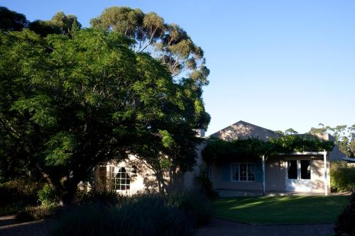 Blue Gum Country Estate Photo