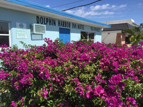 Dolphin Harbor Inn Photo