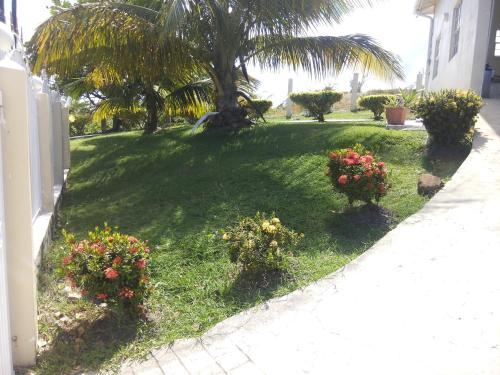 Miss J. Bed and breakfast, Vieux Fort