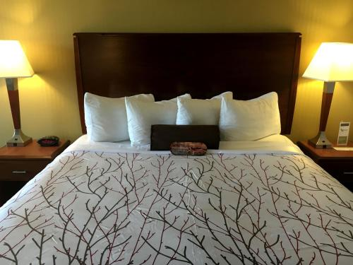 Best Western Plus Executive Inn photo 21