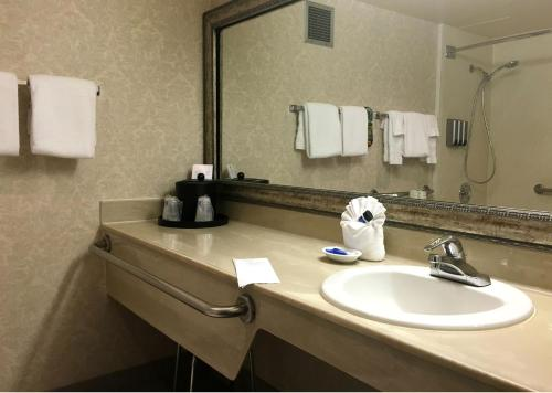 Best Western Plus Executive Inn photo 29