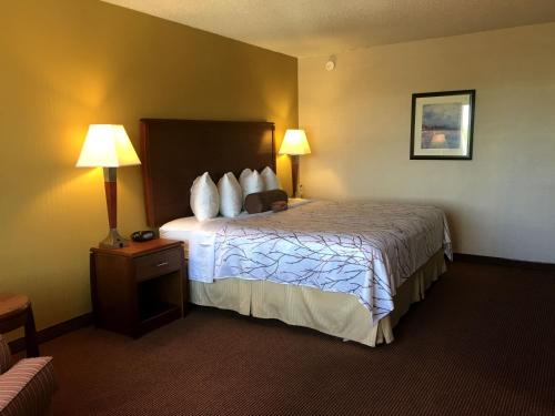Best Western Plus Executive Inn photo 30