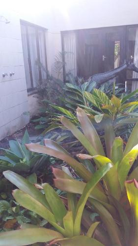 Cycad Bed And Breakfast Photo