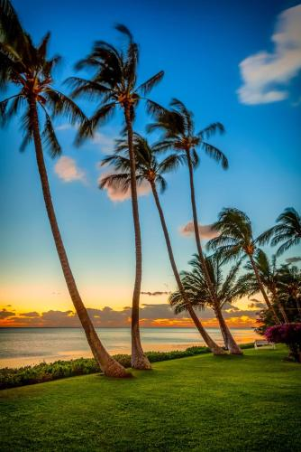 Castle Molokai Shores Photo