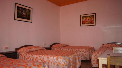 Yes Arequipa Hostel Photo