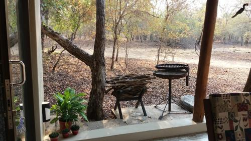 Babushka Self Catering Cottage & Kruger Safaris Photo