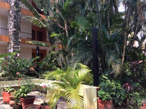 Hotel Plaza Palenque Inn Photo