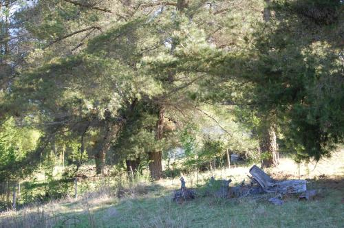 Rancho Saeta Photo
