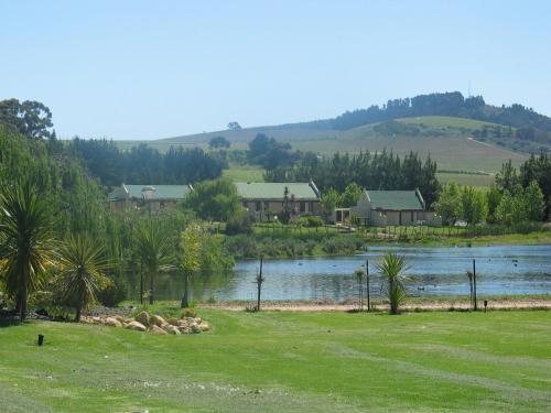 Skilpadvlei Wine Farm Photo