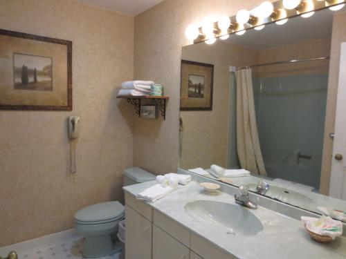 Roosevelt Inn & Suites Saratoga Springs Photo