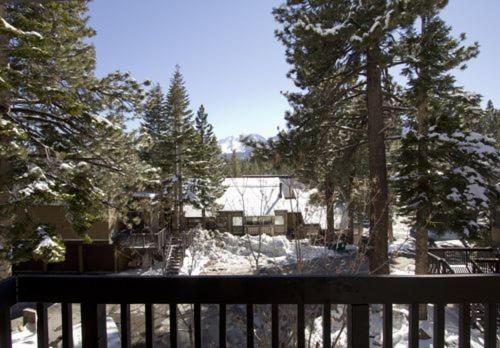 Bigwood #099 - One Bedroom Condo - Mammoth Lakes, CA 93546