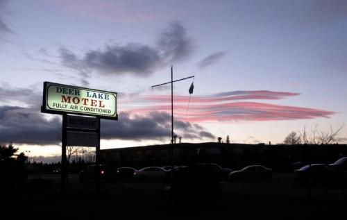 Deer Lake Motel Photo