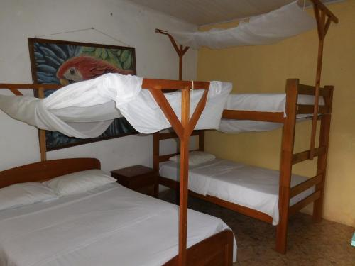 Tambopata Hostel Photo