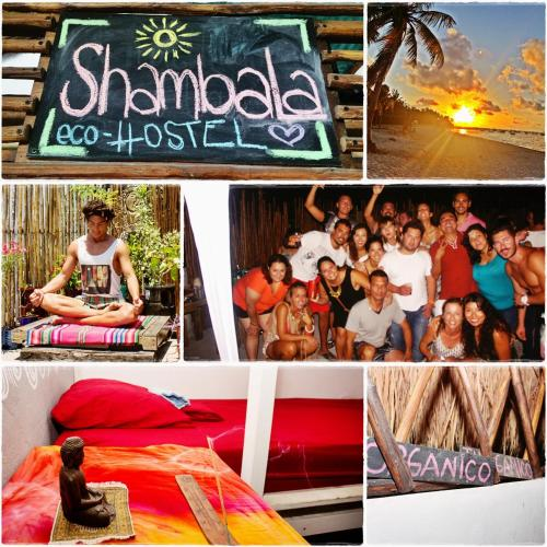 Shambala Eco Hostel Photo