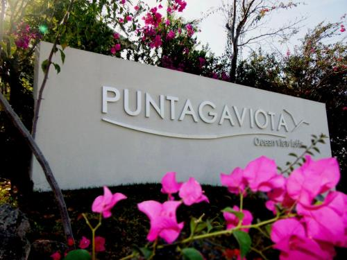 Puntagaviota Photo