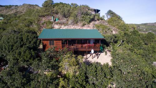 Tree Top Cottage Photo